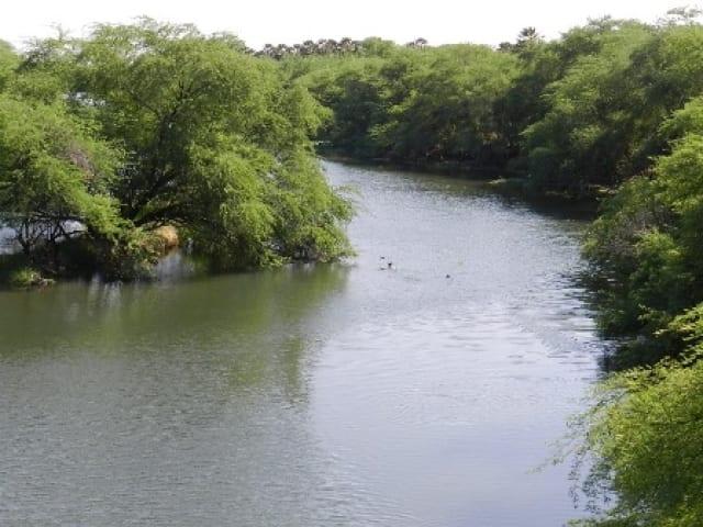 O rio apodi-mossoró