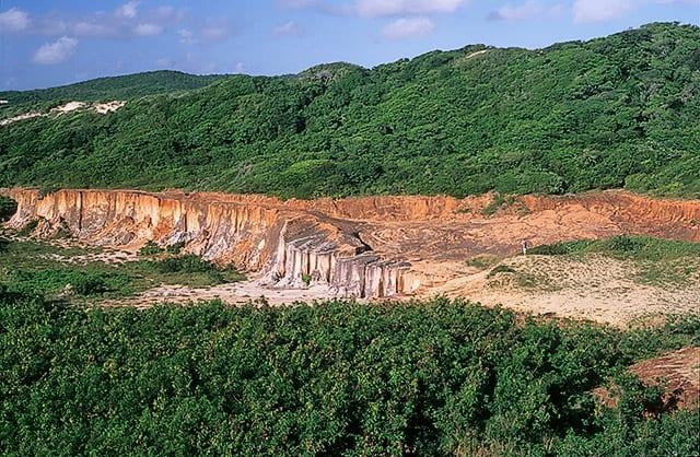 Mata atlântica no Rio Grande o Norte