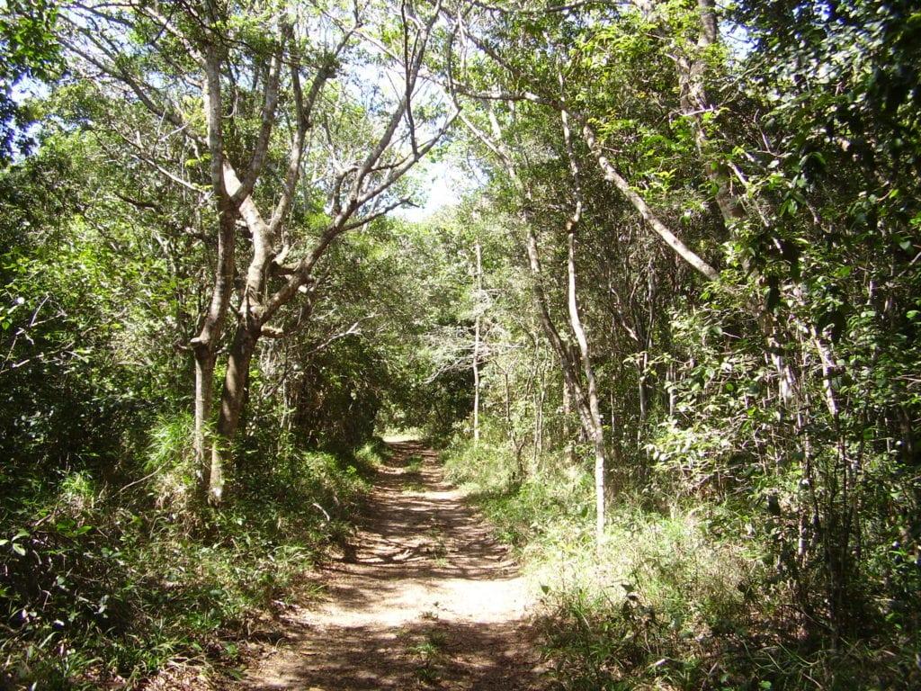 Nísia Floresta RN